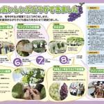 松本市立山辺小学校PTA様/PTA会報第74号